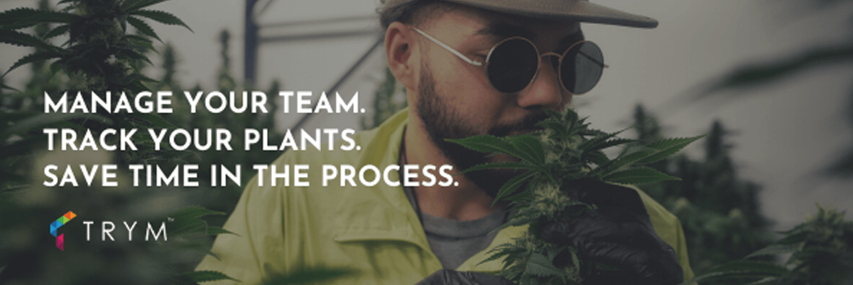 Apex Trading Service Partner Trym Cannabis Cultivation Software